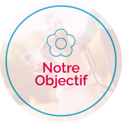 notre-objective